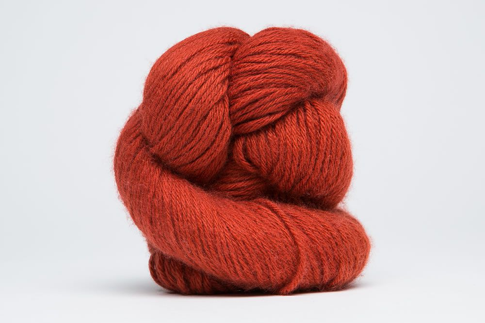 Colorways-083-Papricash, Papricash